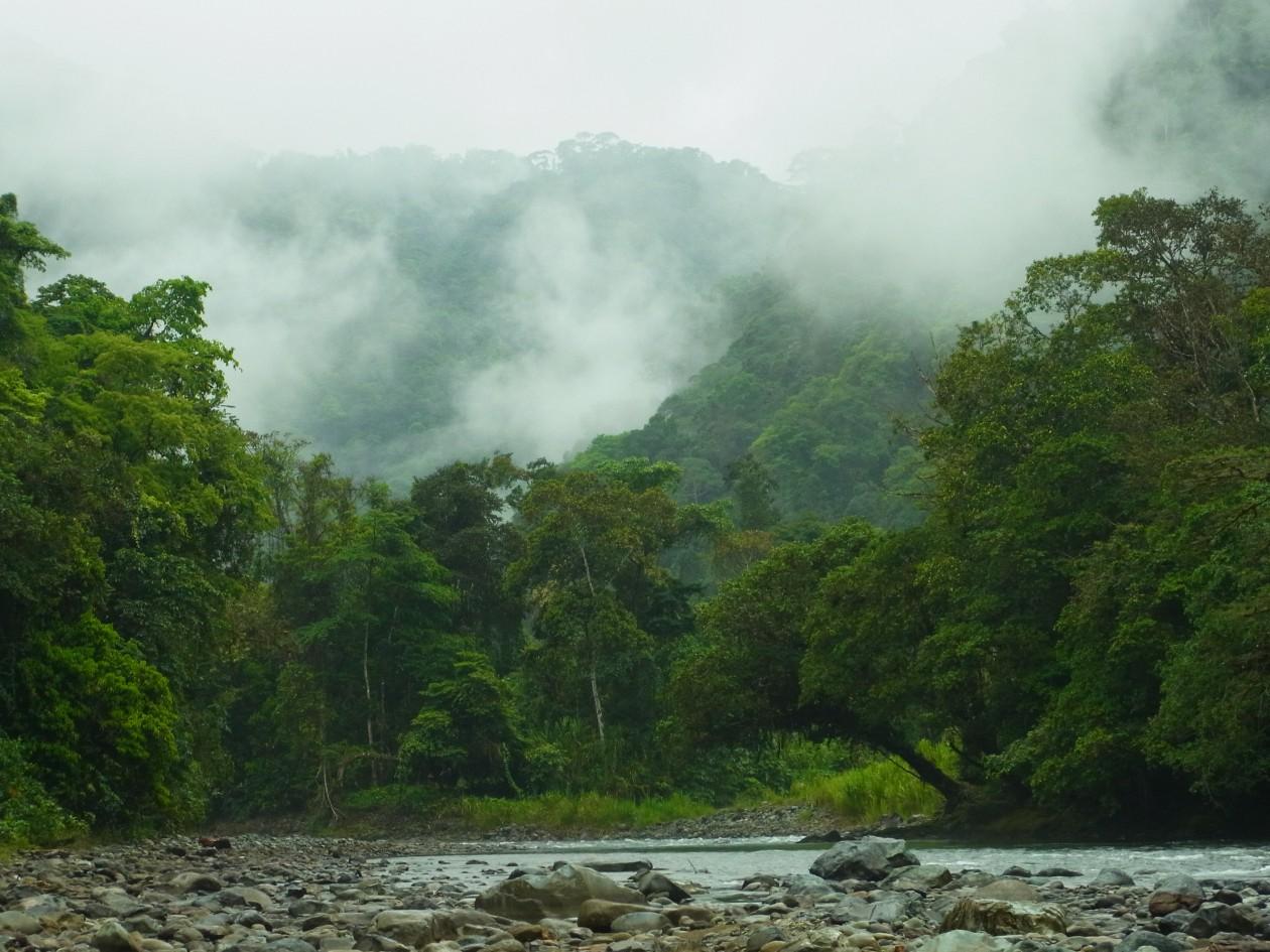 """Dbon Tjang Pjak Yo"" – Kamerafallenprojekt im Siedlungsgebiet der Naso am Rio Teribe, Panama"