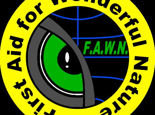 "Link zur ""Dbontjang"" Projektseite Panama von F.A.W.N. e.V."