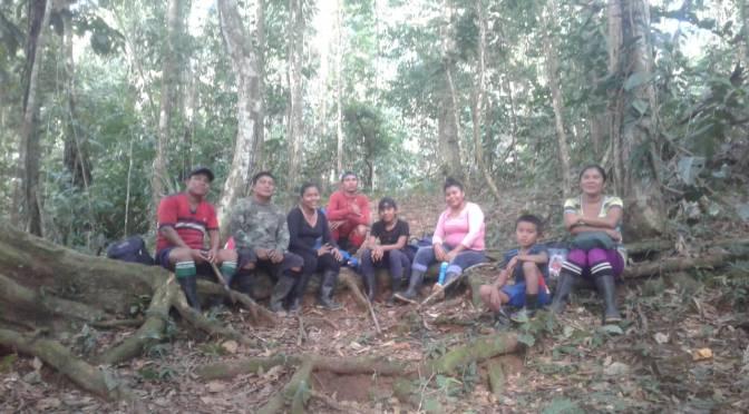 Zeitungsartikel über die Tapirforschung am Rio Teribe