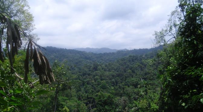 Ecoturismo por la region Naso Tjerdi