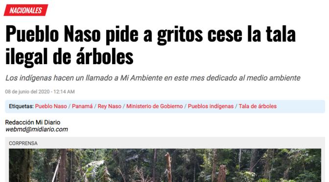 Aktueller Zeitungsartikel: Nasos melden Holzeinschlag beim Umweltminister und beklagen Untätigkeit der lokalen Parkbehörden